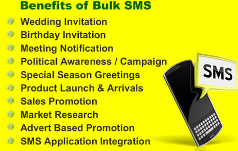 Contact Our SMS Support Team