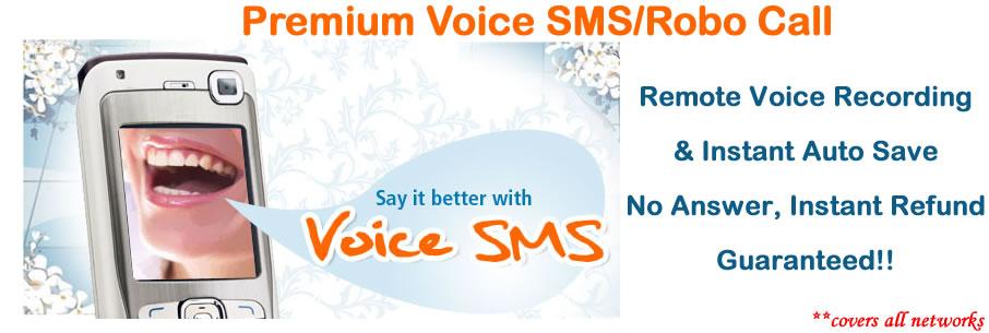 Voice SMS Robo Call Solutions Nigeria